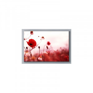 Tableau Rouge Coquelicot