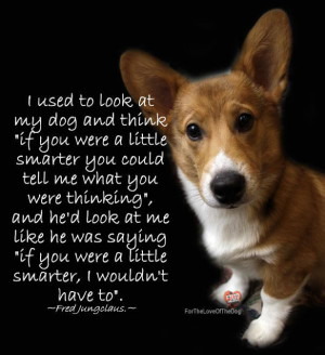 Best Dog Quotes