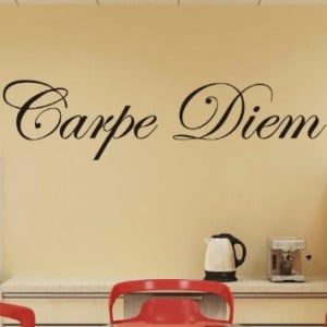 Color Life1102 Carpe Diem Vinyl Wall Decals Quotes Sayings