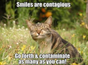 smiles101813 funny pictures