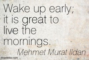 Get Up Early http://meetville.com/images/quotes/Quotation-Mehmet-Murat ...