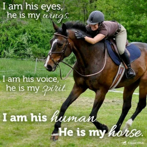 really am having horse fever I hope some day in he near future I ...