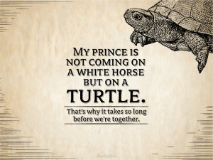 Love My Horse Quotes 2. my prince is not coming on
