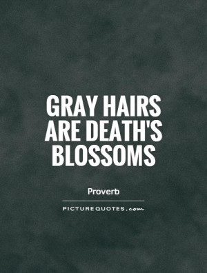 Gray Hair Quotes