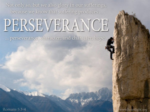 From Perseverance: (persistence...endurance...persevere... ) - Happy ...