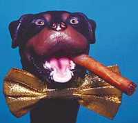 Thursday Funny Video Triumph The Insult Comic Dog Goes Spa