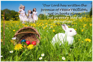 Easter Quote, Easter Egg Hunt, What is Easter, Spring time with rabbit ...