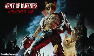 Funny Army of Darkness: The Directors Cat