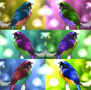 Colorful Art Revsxgirl