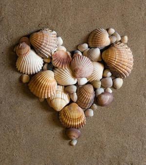 Shell Art Heart