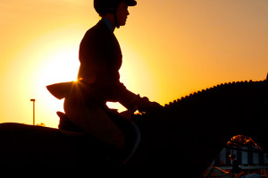 Show Jumping Horse Silhouette And horse at show jumping