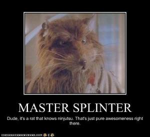 Home   Memes.com   Fuckery Memes Splinter