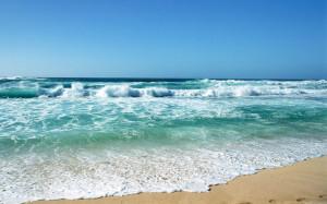 壁纸1440×900海洋世界动态桌面壁纸壁纸,海洋世界动态 ...