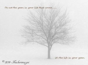 Black & White Lone Tree in Winter Fog with Inspirational Quote Wall ...