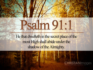 Bible Verses Faith Psalm 91-1 Fall Trees Picture HD Wallpaper