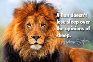 Inspirational lion wallpaper