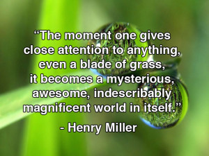 indescribably magnificent world henry miller genius quotes kyle pearce ...