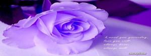 Purple Rose Facebook Cover
