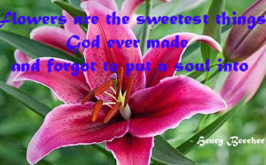 ... Things God Ever Made And Forget To Put A Soul Into - Flower Quote