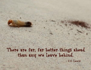 ... , far better things ahead than any we leave behind.- C.S. Lewis quote