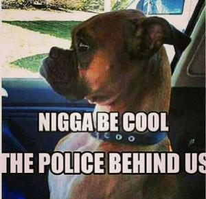boy, car, dog, funny, girl, nigga, police
