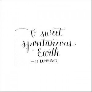 Modern Calligraphy Quotes