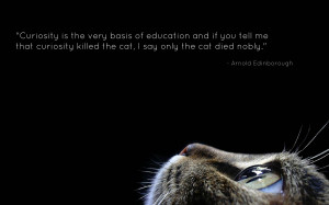 ... by quotes pictures in 2560x1600 arnold edinborough quotes pictures