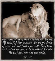 Showing Love by Writing Cute Quotes about Dogs   love story   4.5
