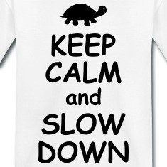 Keep calm and slow down funny quotes turtle animal Shirts
