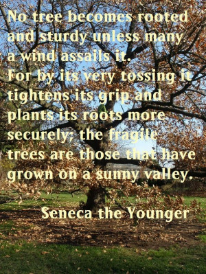 ... sunny valley seneca the younger other family quotes also on webpage