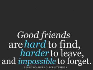 Friendship Quote : Good Friends Are Hard To Find