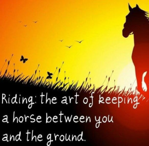 horse #riding #quotes Love to ride
