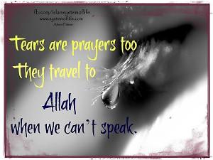 Tear 20121214 2050331828