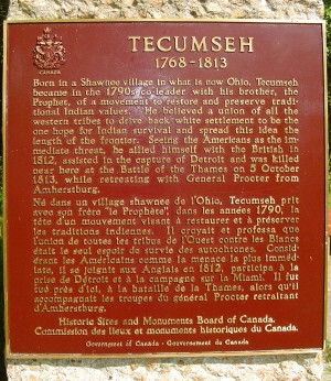 Chief Tecumseh Live Your Life