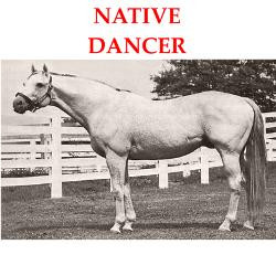 native_dancer_greeting_cards.jpg?height=250&width=250&padToSquare=true