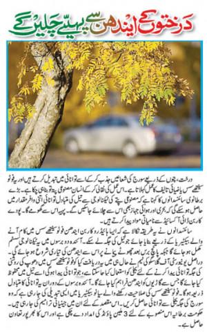 Famous Urdu Quotes Image
