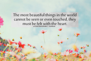 The most beautiful things in the world