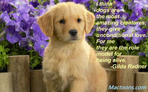 ... Quotes about Dogs: Cute Golden Retriever Puppy And Flowers Photo With