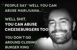 Joe Rogan on Marijuana Prohibition