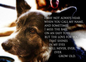 dog quotes and sayings - Google Search