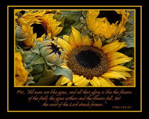 Sunflowers Photograph by Carolyn Marshall - Inspirational Sunflowers ...