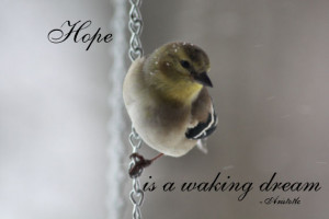 inspirational quotes of hope - Aristotle