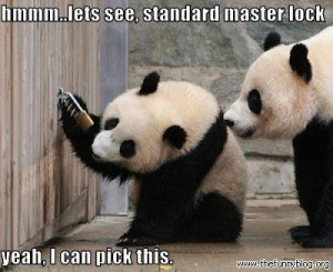 funny panda quotes funny panda quotes funny panda quotes
