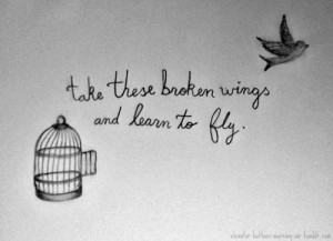 ... popular tags for this image include: fly, quote, bird, text and love