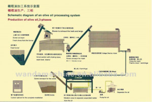 Best quality Oilve Oil Production Line