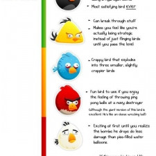 funny angry birds quotes