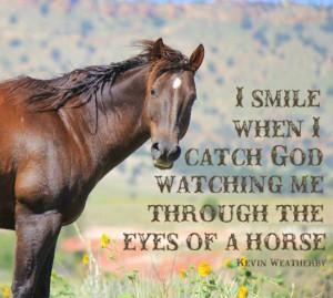 Cute Horse Quotes