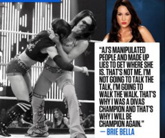 WWE AJ Lee Quotes