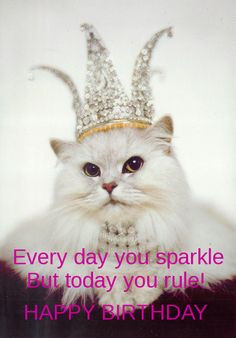 cat birthday card more birthday card kitty cats kitty queen queen ...
