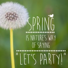 Quote: Spring is natures way of saying